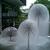 CIMG2098_town_hall_fountains.JPG