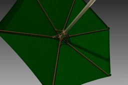 Umbrella - Outdoor