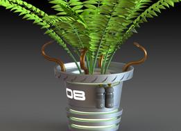 Future fern