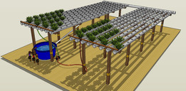 Aquaponic build
