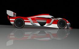 Le Mans TYPE