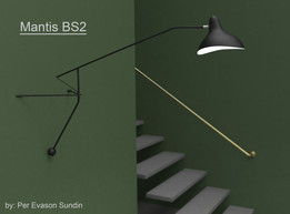 Mantis BS2 Lamp