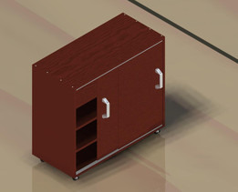Shoos Cabinet