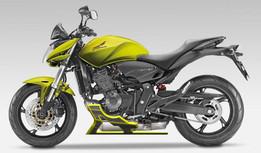 Proteção de motor para Honda Hornet 600