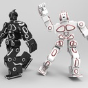 RoboSavvy Humanoid Robot V2