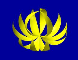 Lotus 12 petal's