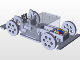 Small buggy with differential gear box and rack and pinion steering