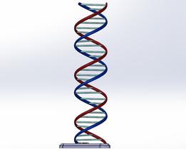 ADN b