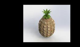 Pineapple model finishing