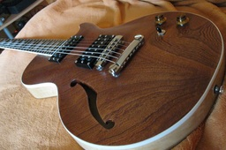 Les Paul Custom Project