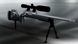 .308WIN Tactical Rifle