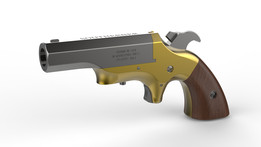 THE SOUTHERN DERRINGER