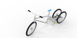 Tricycle Project