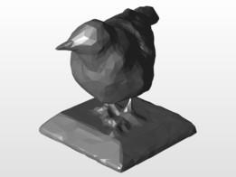 Bird Pasare
