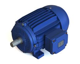 Motor WEG 3CV