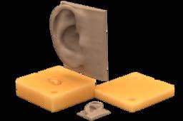 Mold for an Ear | TRINOTA
