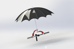 Umbrella Holder for cycle