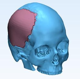 skull - Recent models | 3D CAD Model Collection | GrabCAD