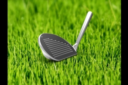 Golf Club Head: 60 Degree Wedge