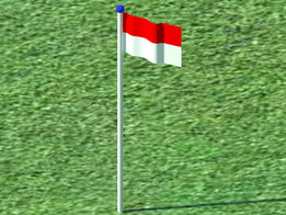 The Flag from My Country (Indonesia)