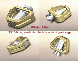 ARION  expandable bladed cervical peek cage