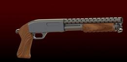 Riot Shot Gun