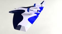 Bagual 5B Target Drone