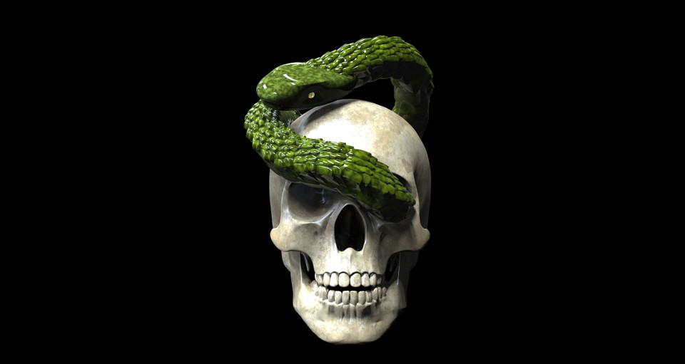 skull and snake | 3D CAD Model Library | GrabCAD