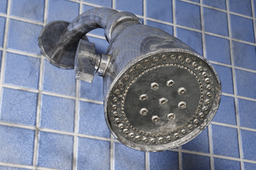 Simple shower head
