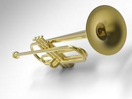 Труба.The trumpet.