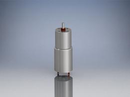 DC Motor, 25mm, 12V, 45 RPM