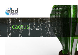Nanocactus