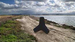 Coastal concrete Tetrapod