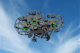 Quad Cage Drone