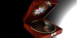 Compass in Jewelry Box
