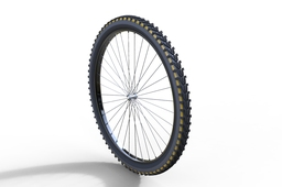 cycle wheel
