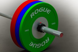 Rogue Olympic Bumper Plates