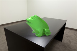 Frog on table