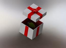 Suprise Present