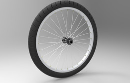 Bicycle tire-19.5''