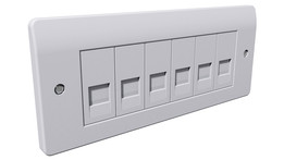 Network Connection Wall Plate (Euro Modular)