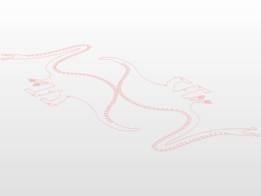 Hypeosaur