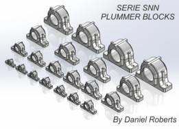 PLUMMER BLOCK SNN CONFIGURATIONS