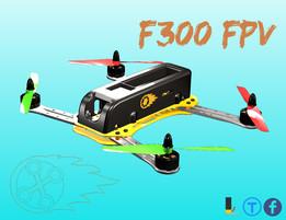 F300 FPV Drone
