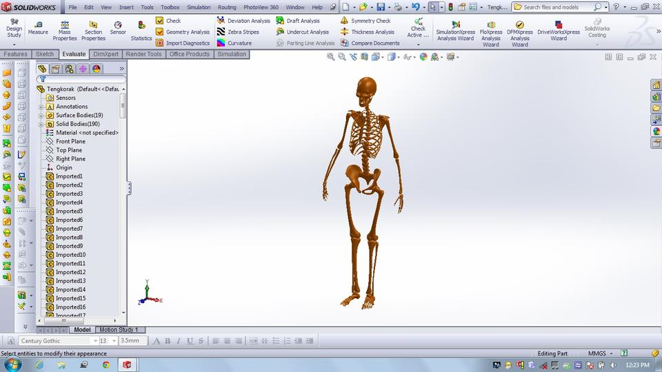 Human Skeleton | 3D CAD Model Library | GrabCAD