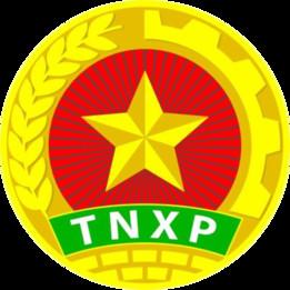 Vietnam Young Volunteers logo