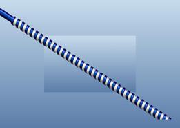circular screw