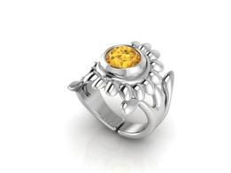 ring 531