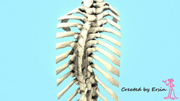 implant - Recent models | 3D CAD Model Collection | GrabCAD