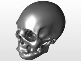 Rough human skull model